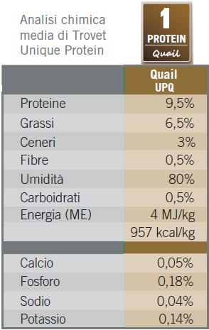 unique protein quail